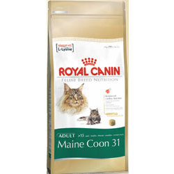 Royal Canin Race Maine Coon Adult
