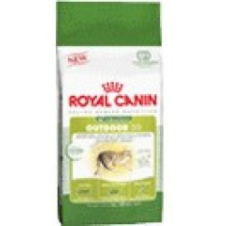Croquettes Royal Canin Outdoor pour chat