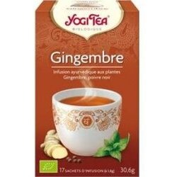 Gingembre Infusion Bio 17 sachets