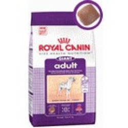 Giant adult Royal Canin croquettes chien