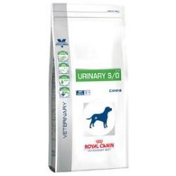 Royal Canin Urinary S O Chien Adulte